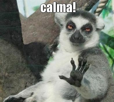 meme-11516-calma!-